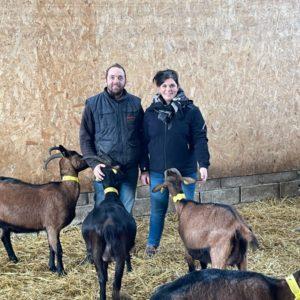 Chèvrerie la Bêle Fontenoise