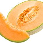 melon-copie